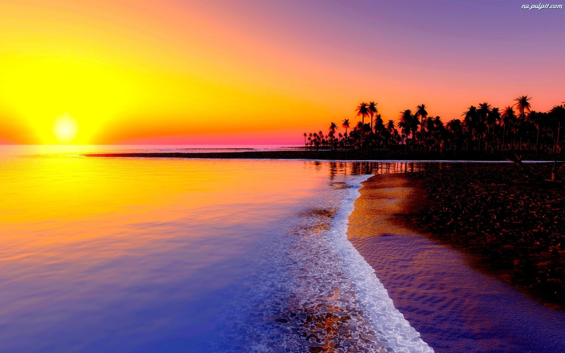 [Resim: tropiki-morze-palmy-zachod-slonca.jpeg]